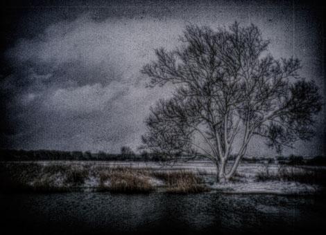 WINTER~1-darkened