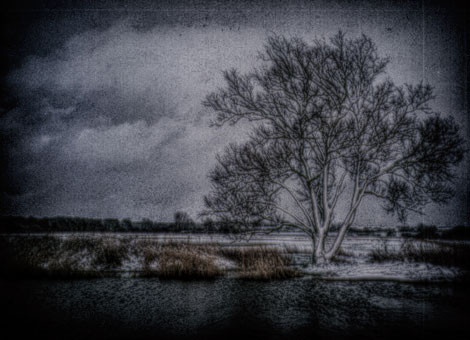 WINTER~1-darkened